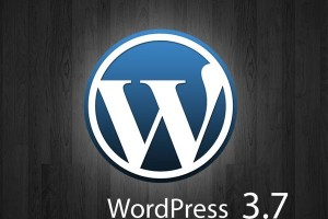 wordpress-37