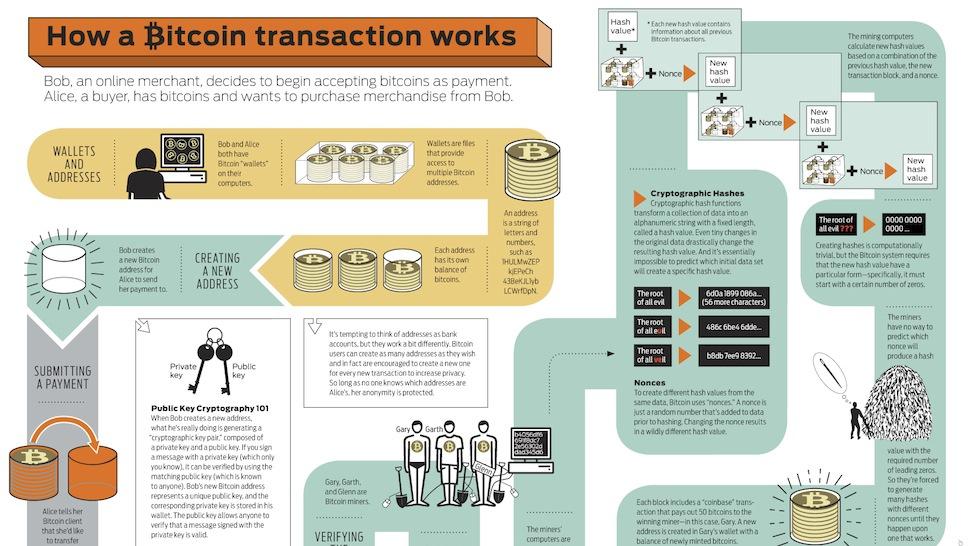 Bitcoin Infografica