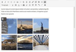wordpress 3.9 tinymce